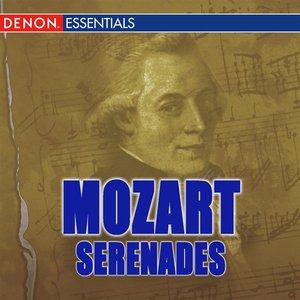 Image for 'Serenade No 12 in C Minor KV 388:  II. Andante'