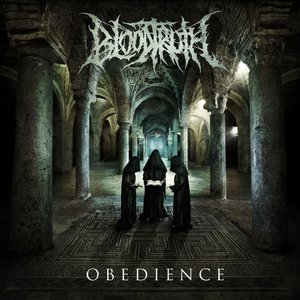 Image for 'Obedience'