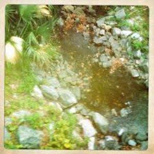 Image for 'Broken Bridge'