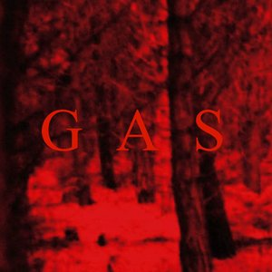 Image for 'Wolfgang Voigt - GAS'