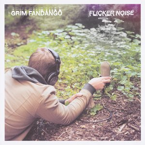 Image for 'Flicker Noise'