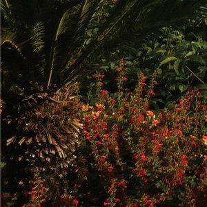 Image for 'Something Good (Remixes)'