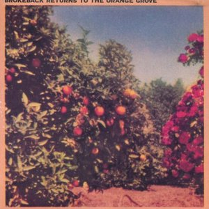 Image for 'Returns To The Orange Grove'