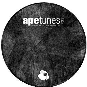 Image for 'Apetunes Compilation [Lany Recordings]'