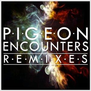 Bild für 'Encounters (Remixes)'