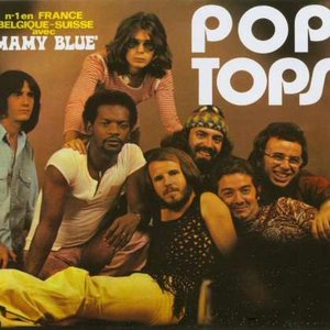 Image for 'Pop Tops'