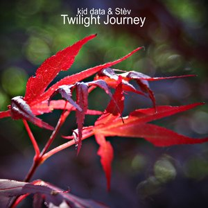 Image for 'Twilight Journey (kid data & Stèv)'