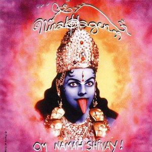 Image for 'Om Namah Shivay'