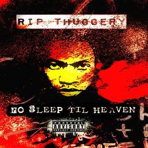Bild für 'No Sleep Til Heaven'