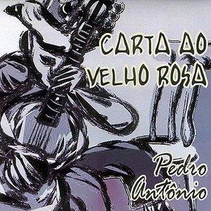 Image for 'Carta ao Velho Rosa'