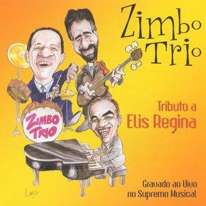 Bild für 'Tributo A Elis Regina'