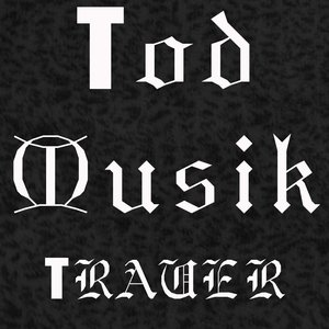 Image for 'Tod musik'
