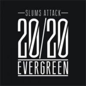 Bild für '20/20 Evergreen'