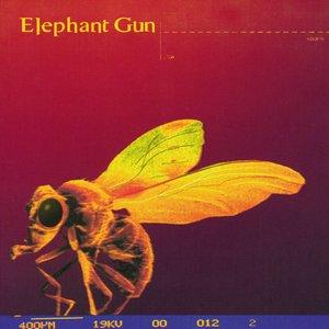 Image for 'Elephant Gun'