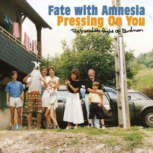 Imagem de 'Fate With Amnesia'