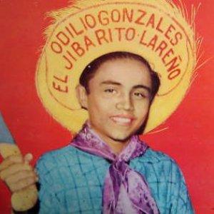 Image for 'Odilio González'