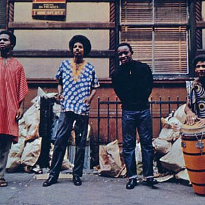 Image for 'The Last Poets'