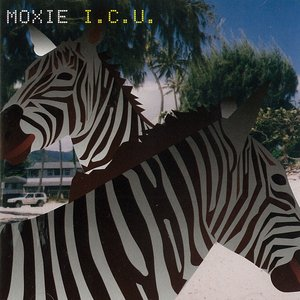 Image for 'I.C.U.'
