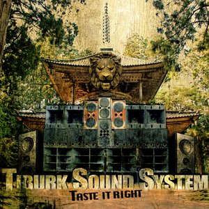 Image for 'Tiburk Sound System'