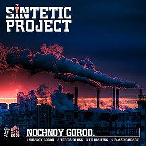Image pour 'Nochnoy Gorod'