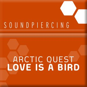Immagine per 'Love Is A Bird (Tech Mix)'
