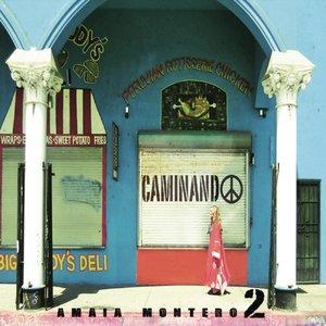 Image for 'Caminando'