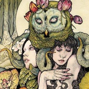 Image for 'Utrydd dei Svake (Demo)'