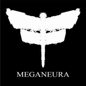 Image for 'Meganeura'