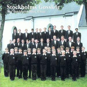 Image for 'Stockholms Gosskör'