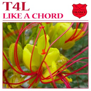 Image for 'Like a Chord'