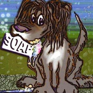 Bild für 'Soap'