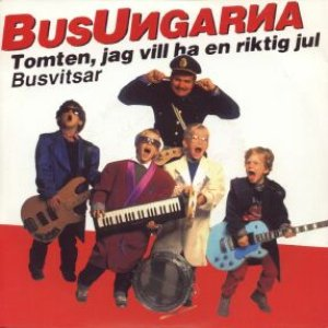 Image for 'Busungarna'