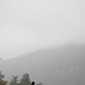 Immagine per 'Desolate Winds'