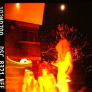 Image for 'The Flaming Lips with Neon Indian'