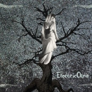 Image for 'ElectricOkra'