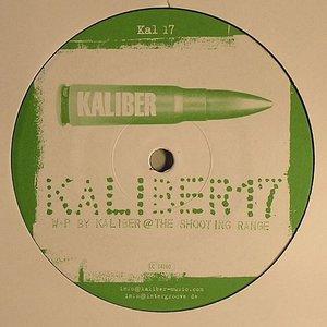 Image for 'Kaliber 17'