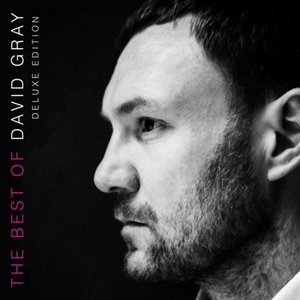 Image for 'The Best of David Gray'