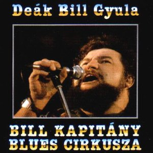 Image for 'Bill Kapitány blues cirkusza'