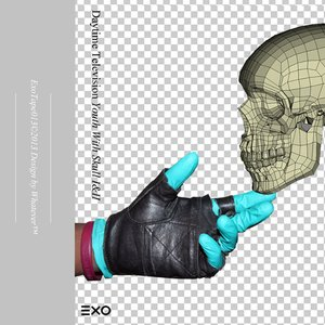 Image for 'Youth With Skull I&II'