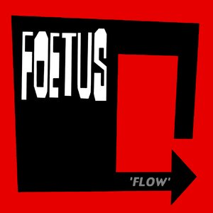 Image for 'Flow'
