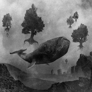 Image for 'Pakenevan veden voima'