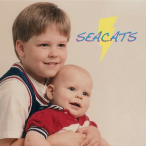 Immagine per 'Seacats'