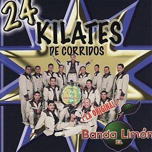 Image for '24 Kilates De Corridos'