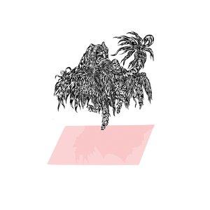 Imagem de 'Starfruit EP'