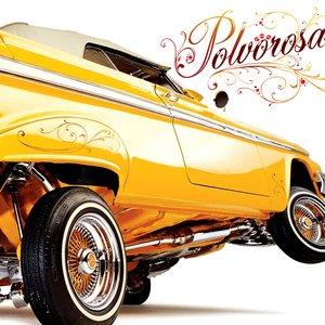 Image for 'Polvorosa'