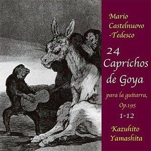 Image for '24 Caprichos de Goya : No.1-12 <August 4,1989 World Premiere Recording>'