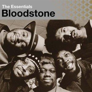 Bild für 'The Essentials:  Bloodstone'