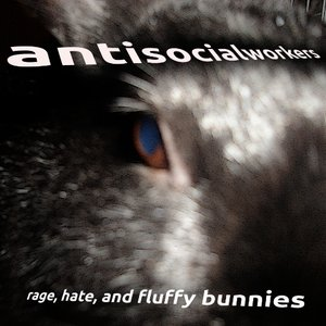 Image for 'rage, hate, and fluffy bunnies'