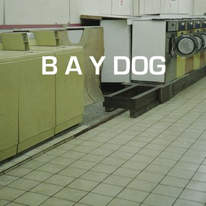 Bild för 'Buy yourself a dog!'
