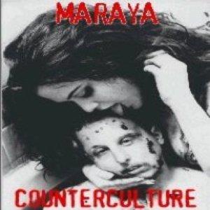Image pour 'Counterculture'